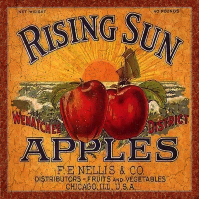 Rising Sun Apple Wall Plaque Vintage Apple Wall Plaque